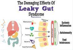 Leaky Gut effects